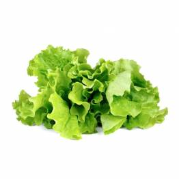 Click and Grow Smart Garden Refill 3-pack - Green Lettuce